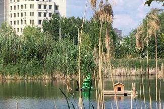 Не помог ни трос, ни груз: вандалы позарились на Царевну-лягушку с казанского озера Харовое, которую местные жители купили на свои деньги