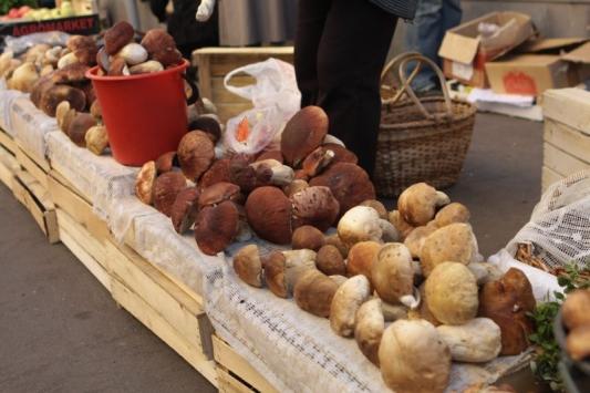 Отравились грибами?