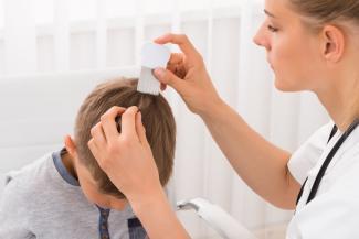 «Уже два раза всей семьей пролечились»: родители требуют устроить в казанских школах проверку на вшивость