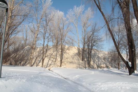 В парке Молодоженов выросли снежные горы