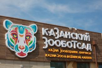 Львов и гамадрилов в новом казанском зоопарке заставят добывать себе пропитание