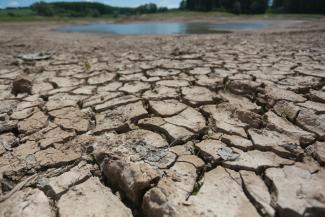 Рукотворная катастрофа: в Казани слили озеро до дна