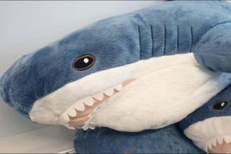 Лучший подарок: Казань сходит с ума по икеевским плюшевым акулам