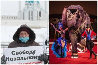 «Самое ужасное, что дочка обвинила в этом меня!»: казанец требует компенсацию за отмену шоу слонов в цирке из-за протестного митинга