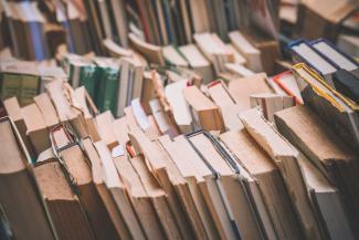 Сельская библиотекарша стала «лицом коррупции» в Татарстане