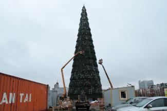 41-метровую елку отправят в утиль (фото из архива «ВК»)