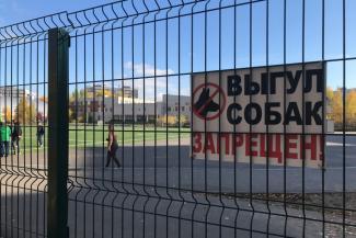 «Они своих зверюг рядом с детьми с поводка спускают»: казанская школа воюет за территорию с владельцами собак