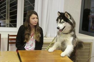 Казанский собачий театр замахнется на Экзюпери