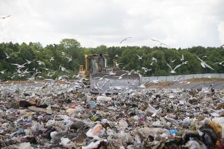 Ученые — о строительстве мусоросжигательного завода в Казани: «Нельзя же построить на весь город один большой сортир!»