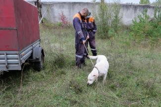 Пропавший в лесу казанский профессор перед исчезновением оставил жене записку