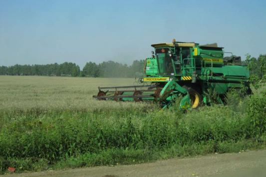 Фермеры подсчитывают убытки