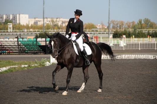 Директор казанской ДЮСШ по конному спорту: «С такими лошадями у нас нет шансов»