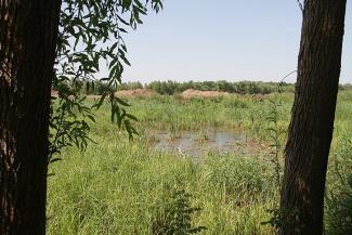 Природные богатства — только для богатых?.. У жителей деревни в Лаишевском районе отняли и реку, и озеро