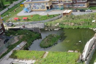 Соципотечникам в Казани вместо парковки и детской площадки обустроили во дворе болото с крысами