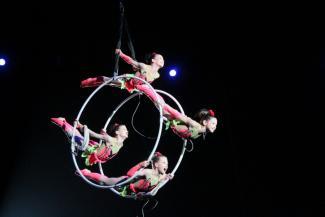 У «цирка завтрашнего дня» в Татарстане нет будущего