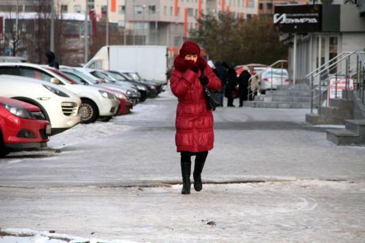 Нежданная зима в Казани: медведи спят, деревья мерзнут