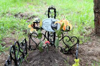 Казанцы возмущены появлением кошачьей могилы в парке Победы