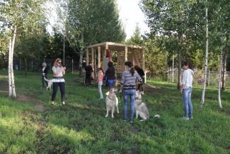 В Горкинско-Ометьевском лесу открылся рай для собак