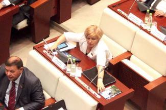 Депутаты Госсовета добавили Татарстану министерств, а Казани — земли