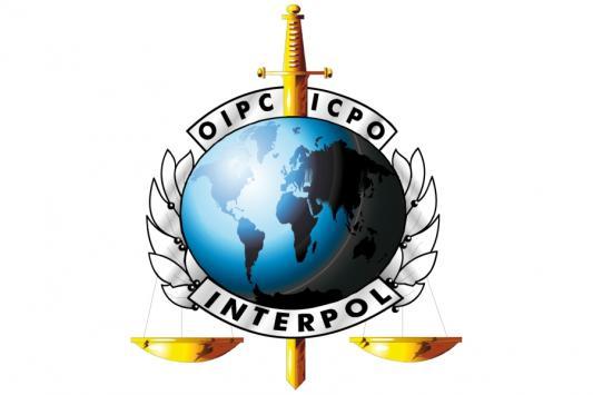 Казанских террористов найдет Интерпол?