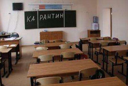 Грипп «закрывает» казанские школы