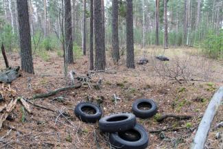Под соснами - унитазы и диваны: «мусорная» реформа превратила в помойки леса под Казанью