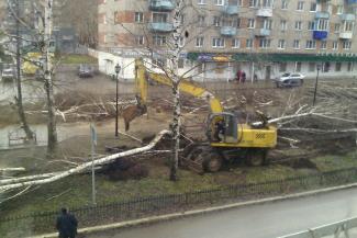 В канун Дня Победы в Татарстане вырубили Аллею героев