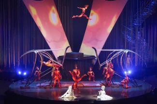 Цирк дю Солей приедет в Казань со своим лесом