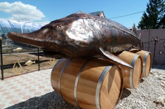 Чудо-юдо рыба-кит