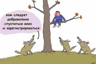 Рисунок Сергея Елкина (RFE/RL)