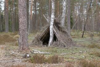 Спали на ветках, ели почки: в Татарстане завели уголовное дело на мать, которая сбежала с детьми в лес, опасаясь всеобщей чипизации