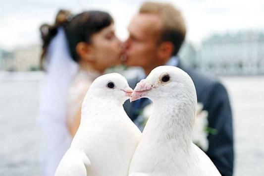 15 мая в Татарстане поженится рекордное число пар