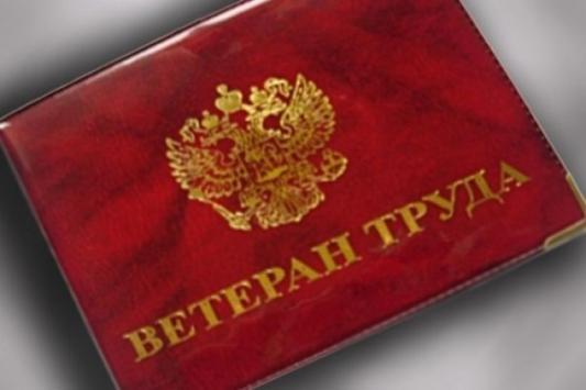Ветеранам в Татарстане придется ездить за льготой в соседний город