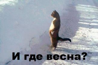 91-й день зимы: весна в Татарстане откладывается до апреля