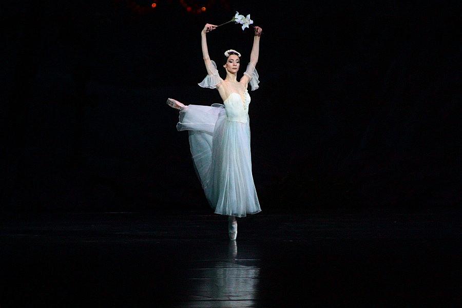 Балерина сучка