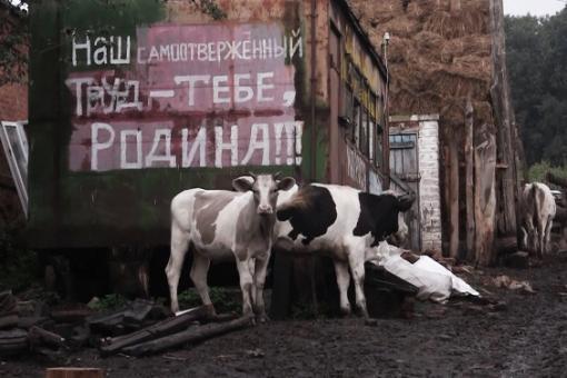 Анна Моисеенко: «Документалисты из нашей Мастерской – та еще секта...»