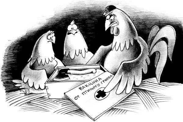 Неменее 4кг зараженной птичьим гриппом продукции отыскали вУдмуртии